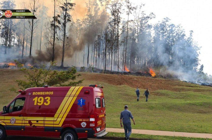 Empresário, esposa e os três filhos morrem carbonizados após queda de avião em São Paulo