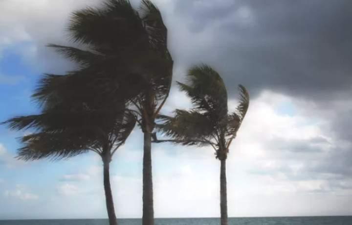 Alerta: ES pode ter vendaval com ventos de até 75km/h, diz Inmet e Marinha