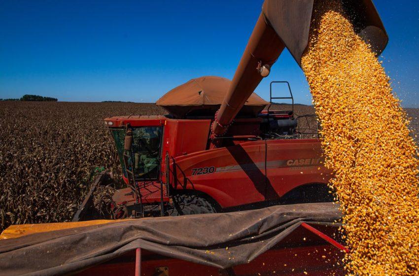 Balança comercial tem superávit de US$ 1,102 bi no início de outubro